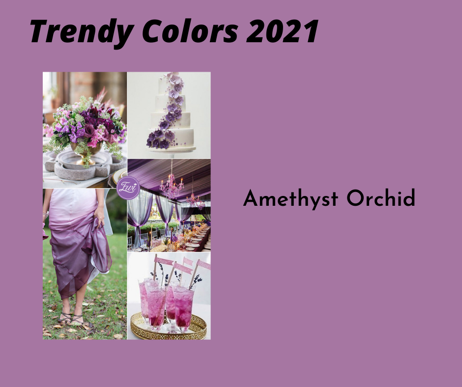 Amethyist_Orchid.png